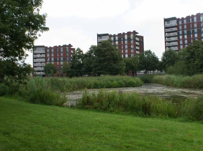 Stadspark, Huizen