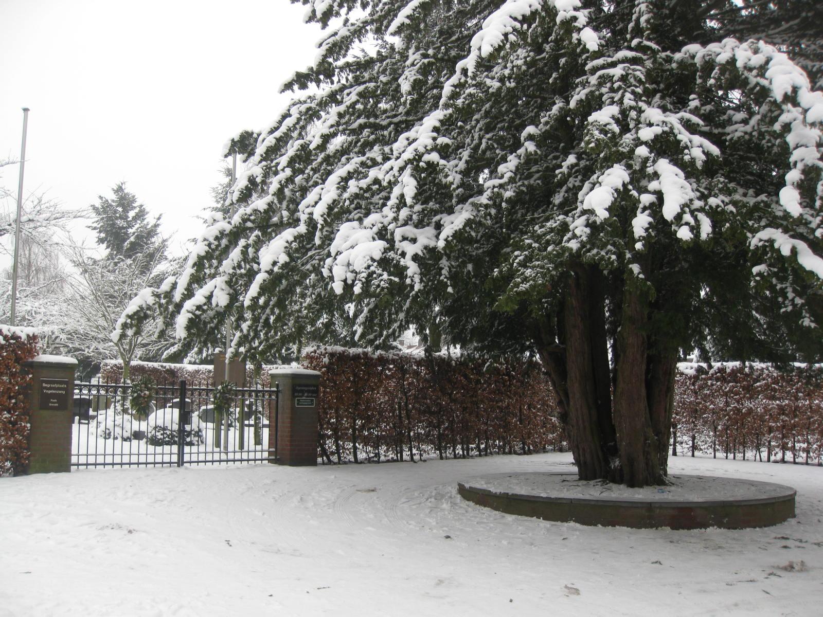 Begraafplaats Vogelenzang, St. Laurentius Parochie, Ginneken