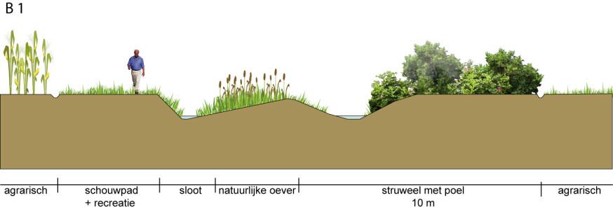 Natuurontwikkeling, Wintelre/Oerle