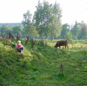 Park Hoge Vught, Breda