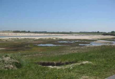 Herdijkte en Verdronken Zwarte Polder, Nieuwvliet